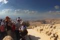 In Giordania, sul monte Nebo da dove Mosè vide la Terra Promessa 1